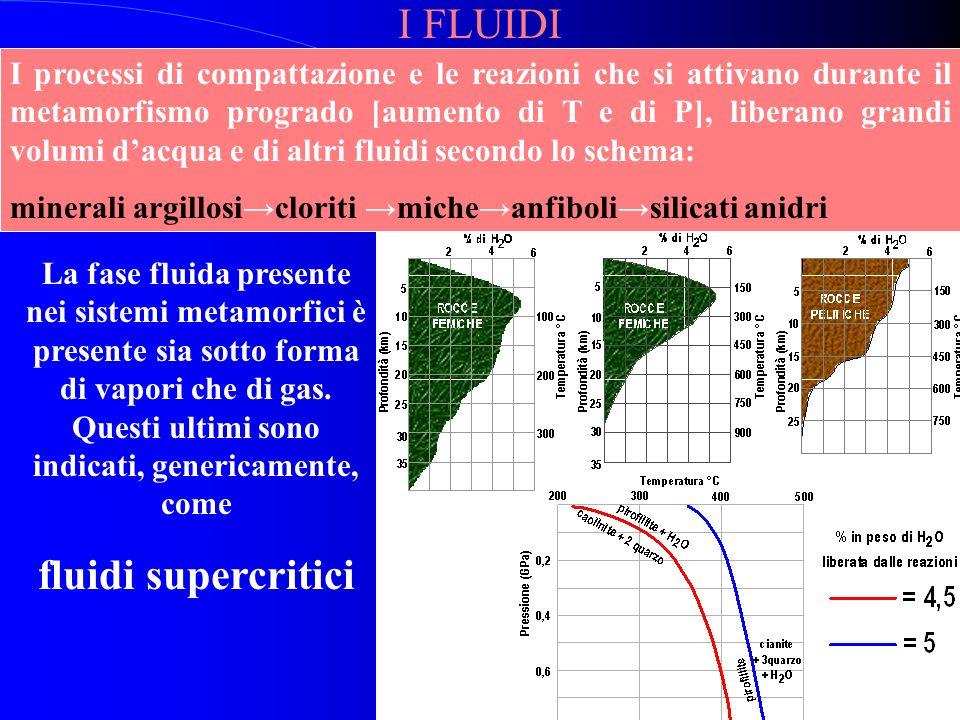 NATURA dei FLUIDI nel METAMORFISMO La fase fluida presente ed attiva durante i processi metamorfici consiste di H 2 O con quantità variabili di CO 2,