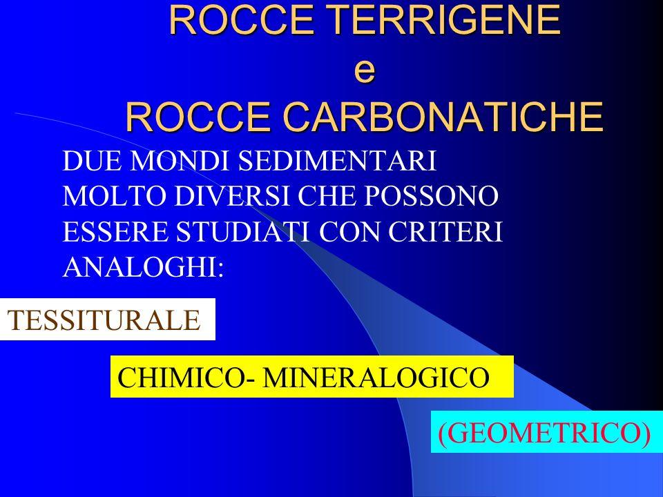 I quattro tipi principali di INTRACLASTI = materiali allobiochimici (ooidi, peloidi, fossili ed intralitoclasti) che possono essere presenti in una ro