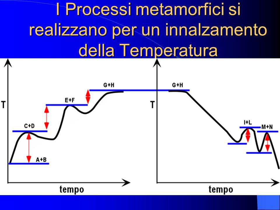 CAMPO P-T nel quale si realizzano i PROCESSI METAMORFICI Curva del solidus dei graniti