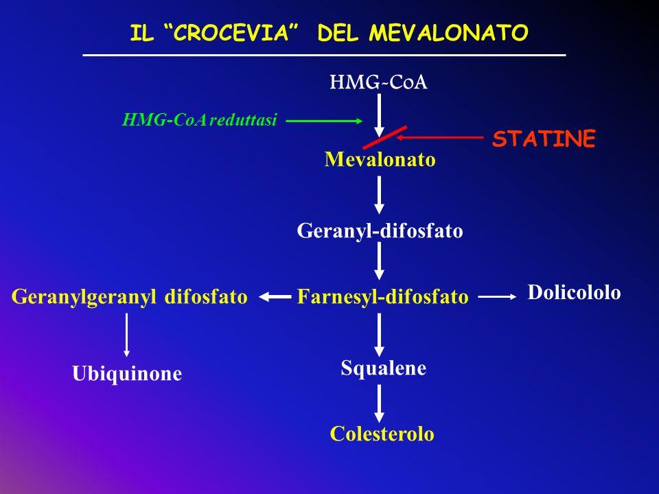 HMG-CoA Mevalonato Geranyl-difosfato HMG-CoA reduttasi STATINE Farnesyl-difosfato Squalene Colesterolo Dolicololo Geranylgeranyl difosfato Ubiquinone