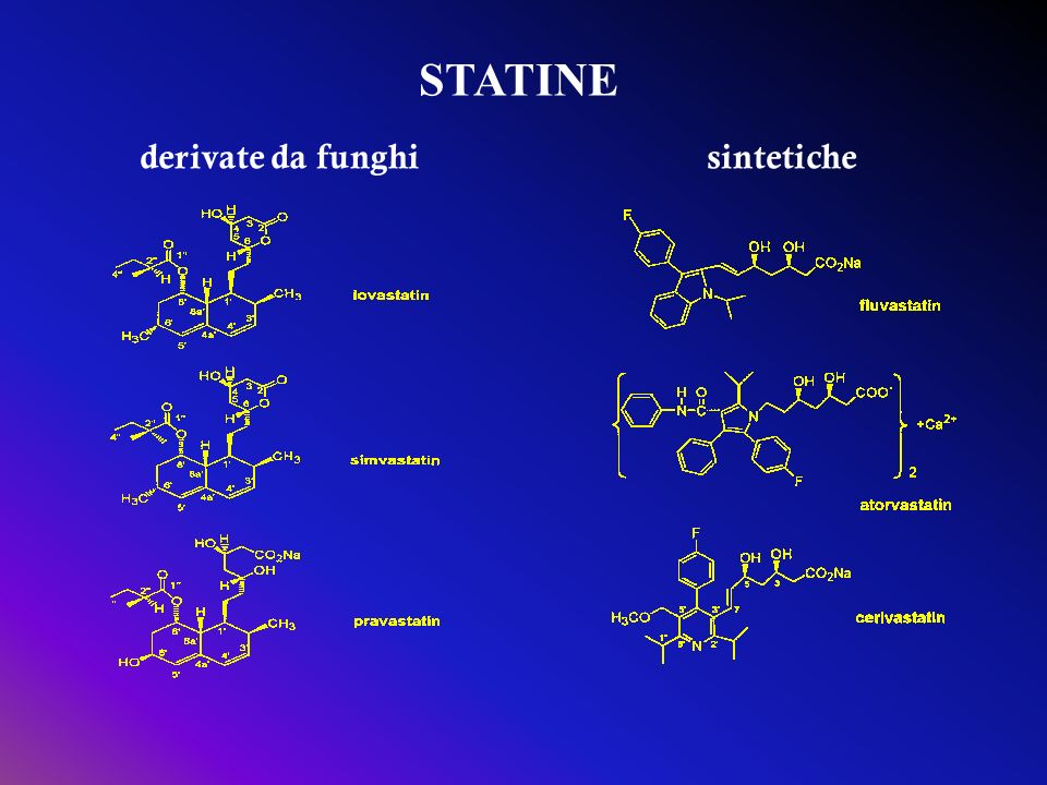 STATINE derivate da funghisintetiche