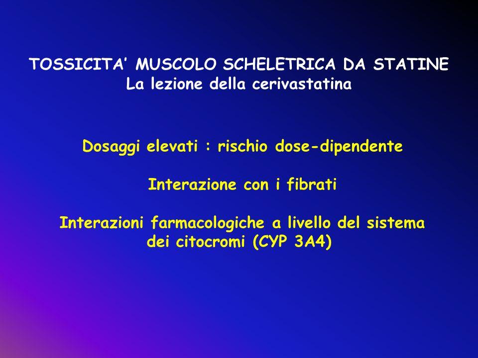 TOSSICITA MUSCOLO SCHELETRICA DA STATINE La lezione della cerivastatina Dosaggi elevati : rischio dose-dipendente Interazione con i fibrati Interazion