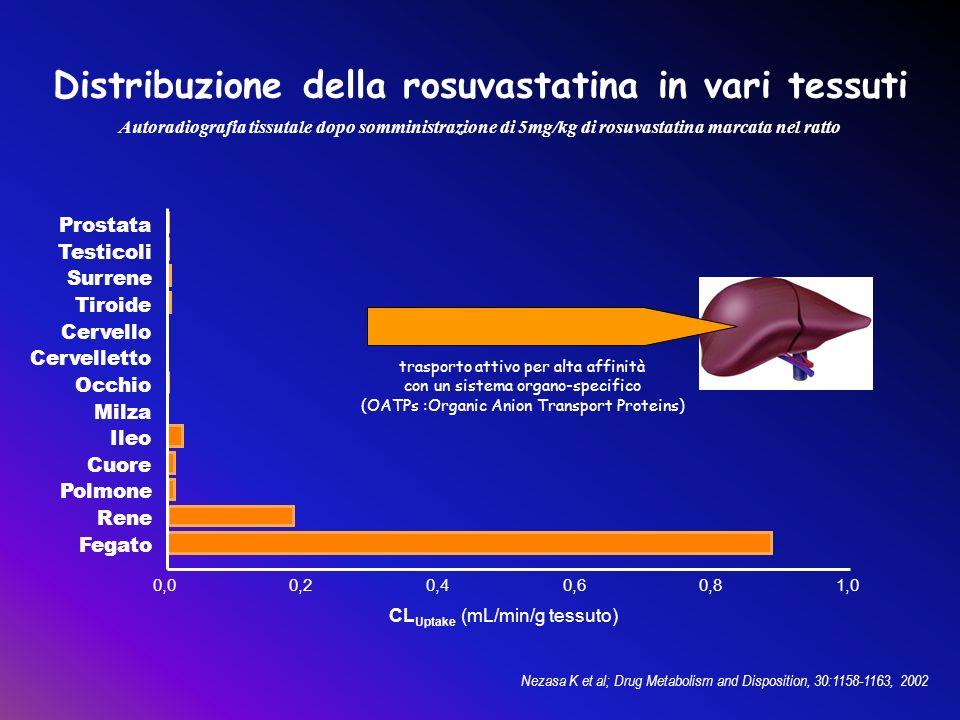 Nezasa K et al; Drug Metabolism and Disposition, 30:1158-1163, 2002 0,00,20,40,60,81,0 Prostata Testicoli Surrene Tiroide Cervello Occhio Milza Ileo F