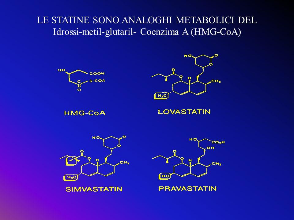 LE STATINE SONO ANALOGHI METABOLICI DEL Idrossi-metil-glutaril- Coenzima A (HMG-CoA)