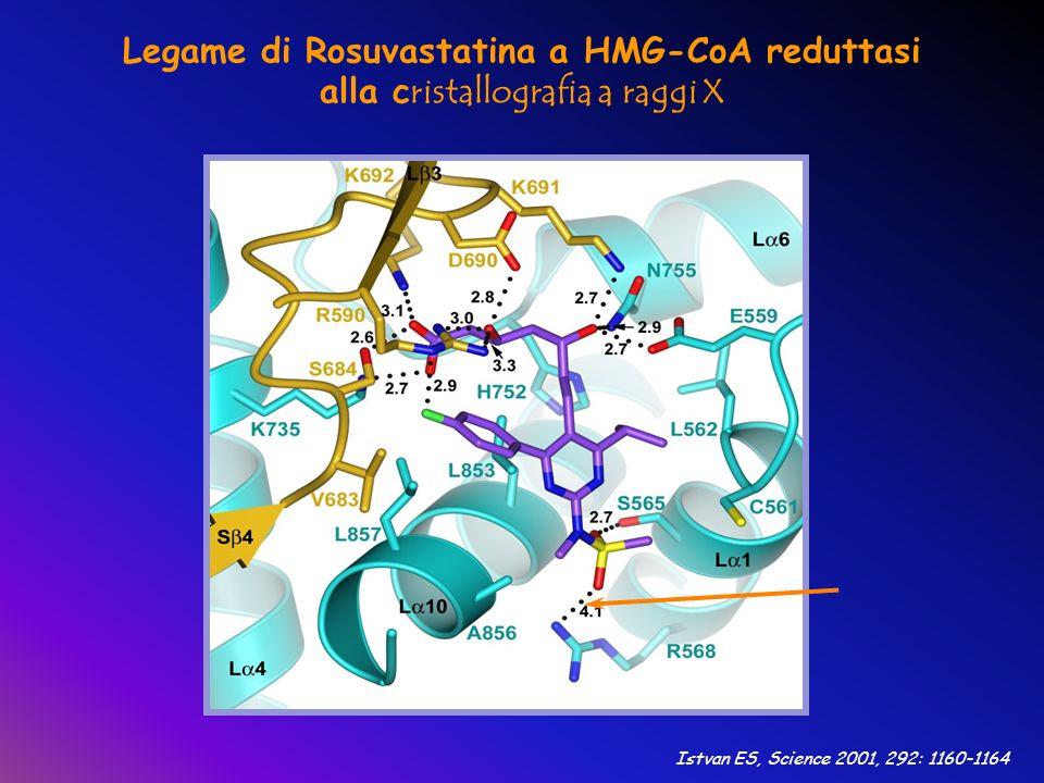 Istvan ES, Science 2001, 292: 1160-1164 Legame di Rosuvastatina a HMG-CoA reduttasi alla c ristallografia a raggi X