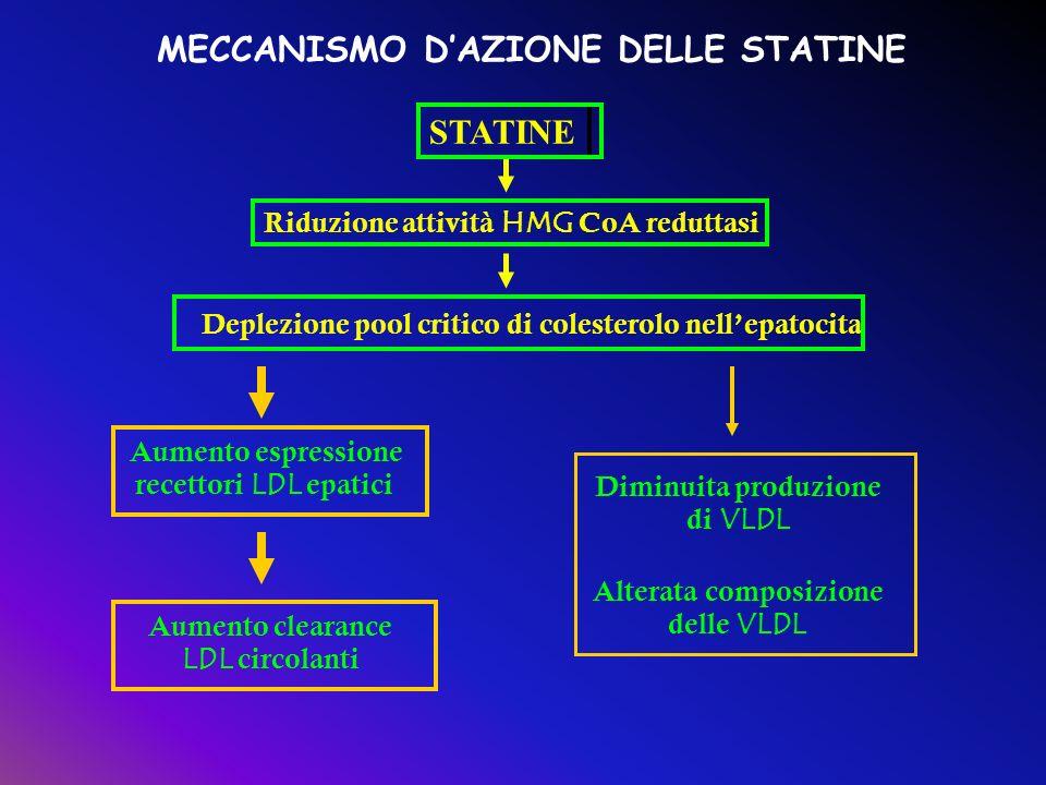 Aumento clearance LDL circolanti Aumento espressione recettori LDL epatici Deplezione pool critico di colesterolo nellepatocita Riduzione attività HMG