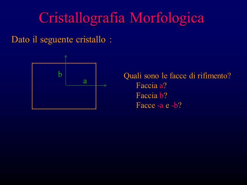 Cristallografia Morfologica Dato il seguente cristallo: a b c Vista 2-D lungo c a b