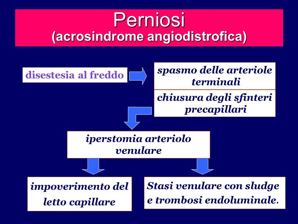 Perniosi (acrosindrome angiodistrofica) disestesia al freddo spasmo delle arteriole terminali chiusura degli sfinteri precapillari iperstomia arteriol