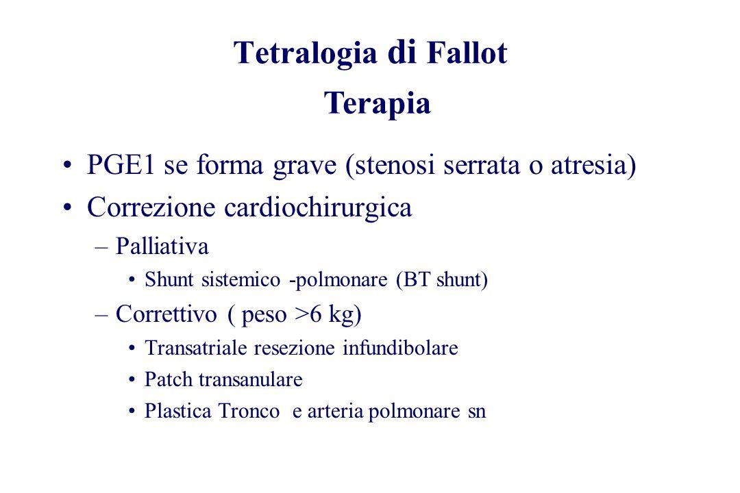 PGE1 se forma grave (stenosi serrata o atresia) Correzione cardiochirurgica –Palliativa Shunt sistemico -polmonare (BT shunt) –Correttivo ( peso >6 kg