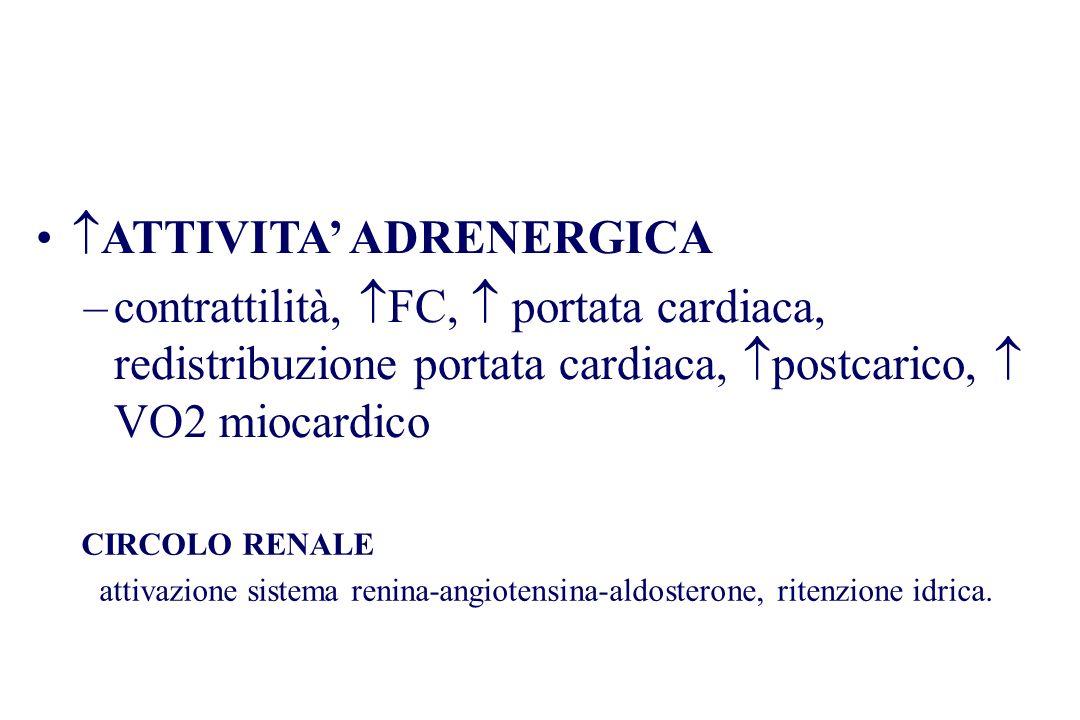 CIRCOLO RENALE attivazione sistema renina-angiotensina-aldosterone, ritenzione idrica. ATTIVITA ADRENERGICA –contrattilità, FC, portata cardiaca, redi