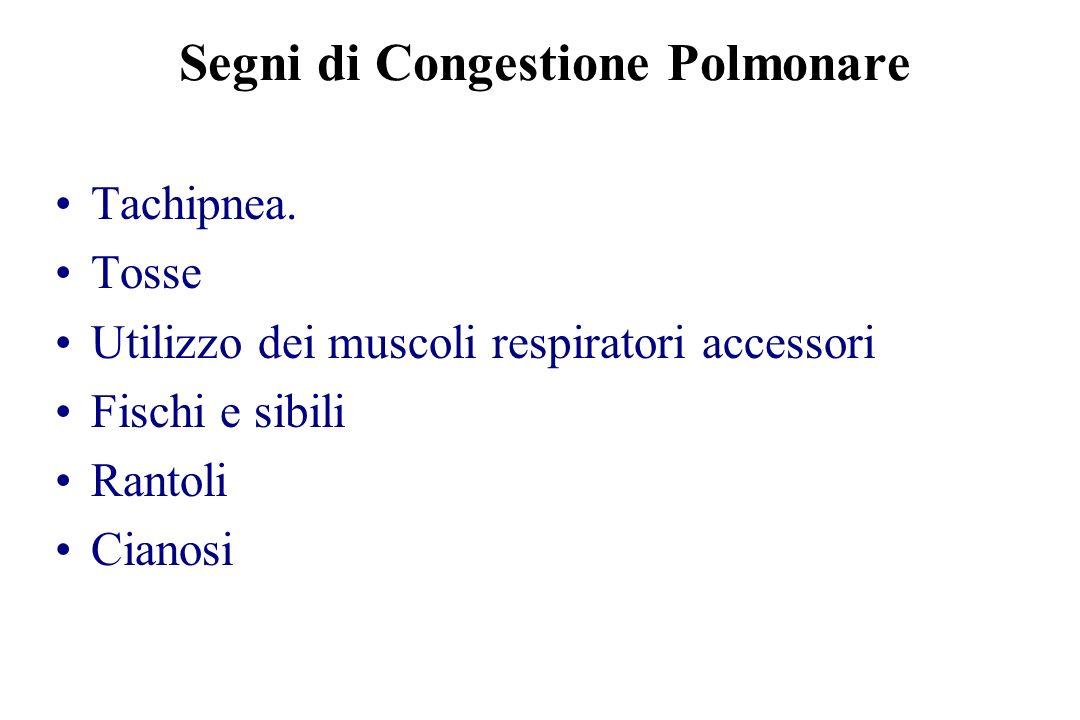 Segni di Congestione Polmonare Tachipnea. Tosse Utilizzo dei muscoli respiratori accessori Fischi e sibili Rantoli Cianosi