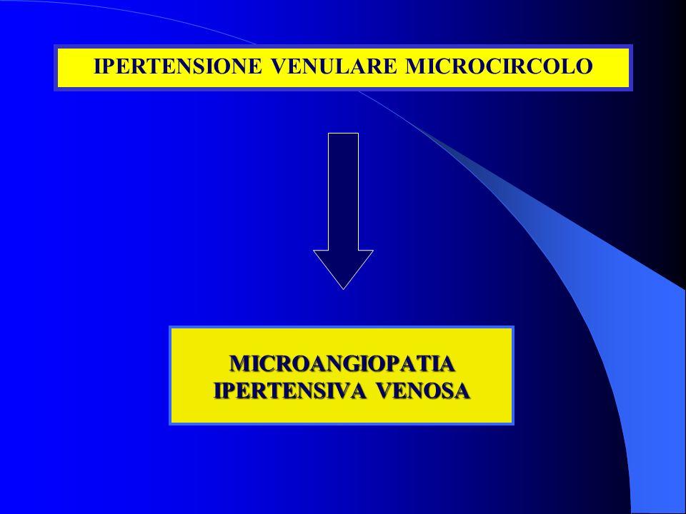 MICROANGIOPATIA IPERTENSIVA VENOSA IPERTENSIONE VENULARE MICROCIRCOLO