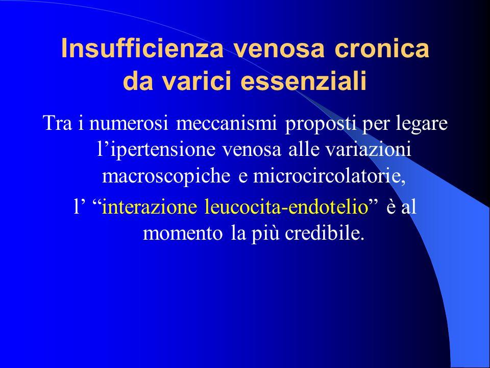 Tra i numerosi meccanismi proposti per legare lipertensione venosa alle variazioni macroscopiche e microcircolatorie, l interazione leucocita-endoteli