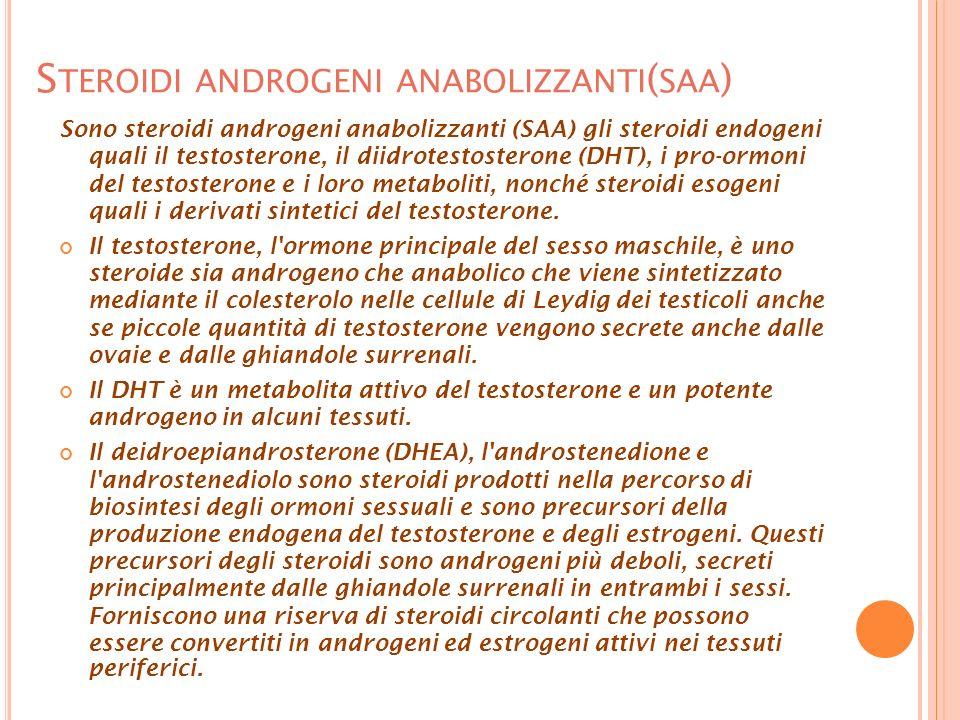 S TEROIDI ANDROGENI ANABOLIZZANTI ( SAA ) Sono steroidi androgeni anabolizzanti (SAA) gli steroidi endogeni quali il testosterone, il diidrotestosterone (DHT), i pro-ormoni del testosterone e i loro metaboliti, nonché steroidi esogeni quali i derivati sintetici del testosterone.