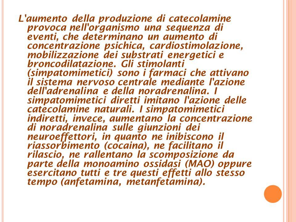 L aumento della produzione di catecolamine provoca nell organismo una sequenza di eventi, che determinano un aumento di concentrazione psichica, cardiostimolazione, mobilizzazione dei substrati energetici e broncodilatazione.