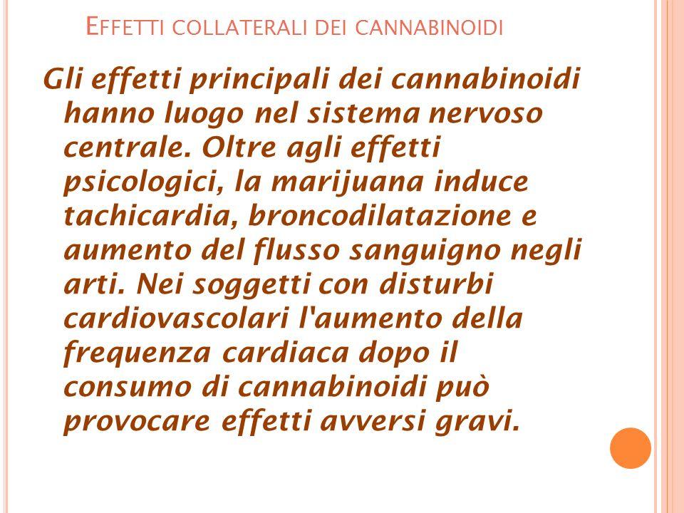 E FFETTI COLLATERALI DEI CANNABINOIDI Gli effetti principali dei cannabinoidi hanno luogo nel sistema nervoso centrale.