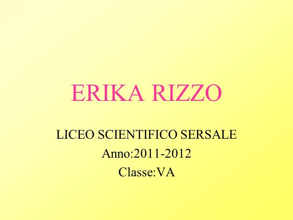 ERIKA RIZZO LICEO SCIENTIFICO SERSALE Anno:2011-2012 Classe:VA
