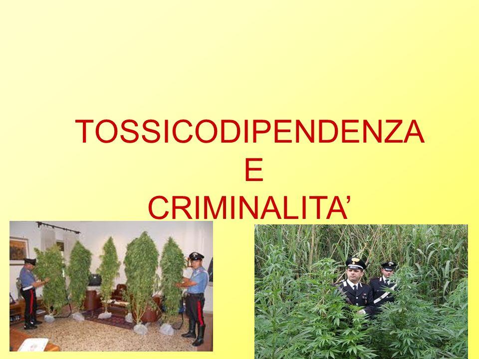 TOSSICODIPENDENZA E CRIMINALITA
