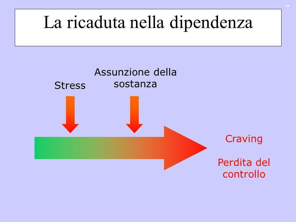 14 La ricaduta nella dipendenza Stress Assunzione della sostanza Craving Perdita del controllo