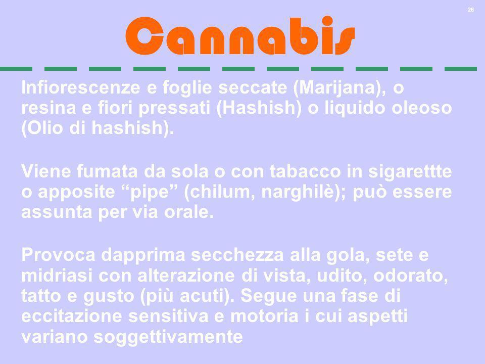 26 Cannabis Infiorescenze e foglie seccate (Marijana), o resina e fiori pressati (Hashish) o liquido oleoso (Olio di hashish). Viene fumata da sola o