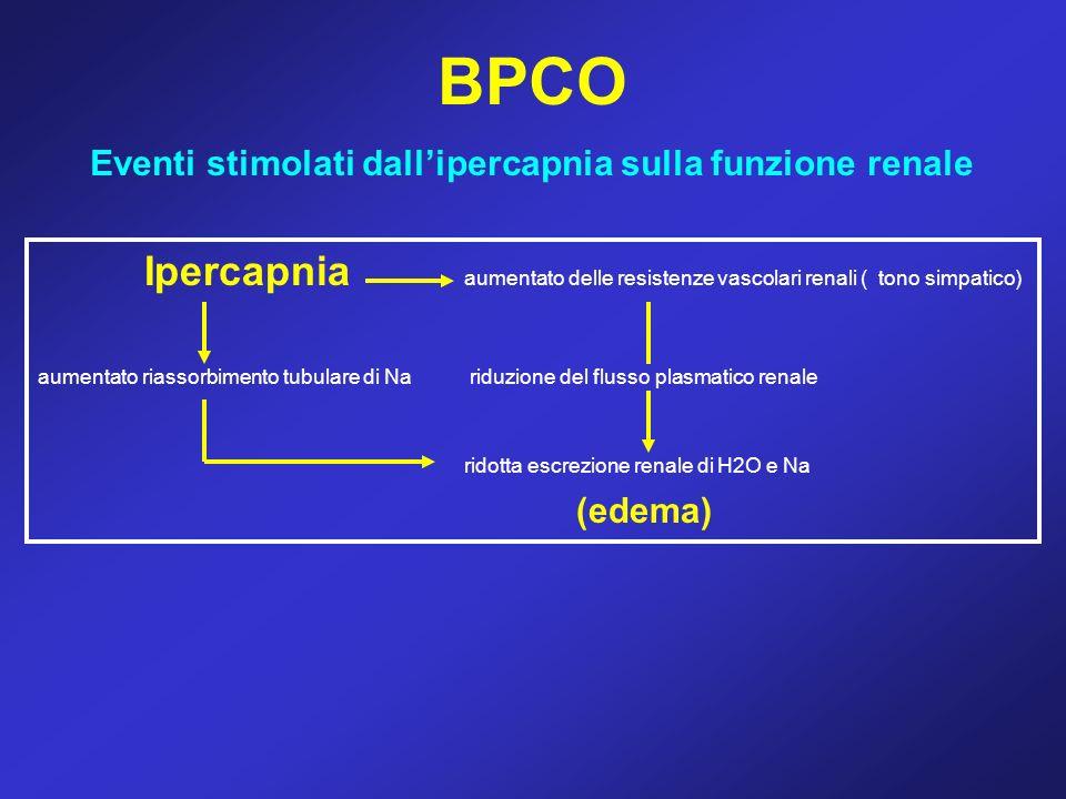 BPCO Eventi stimolati dallipercapnia sulla funzione renale Ipercapnia aumentato delle resistenze vascolari renali ( tono simpatico) aumentato riassorb