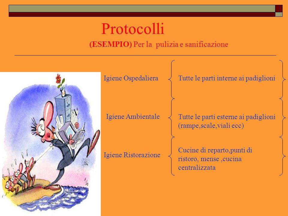 Protocolli I protocolli di pulizia per esempio definiscono,per tipologia di area, le prestazioni previste e le relative frequenze di intervento.
