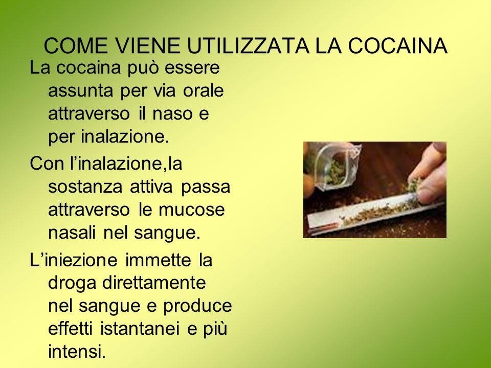 COME VIENE UTILIZZATA LA COCAINA La cocaina può essere assunta per via orale attraverso il naso e per inalazione. Con linalazione,la sostanza attiva p