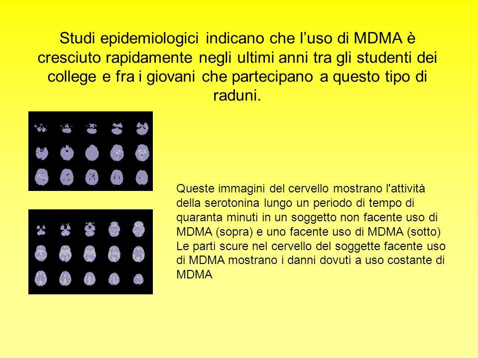 Studi epidemiologici indicano che luso di MDMA è cresciuto rapidamente negli ultimi anni tra gli studenti dei college e fra i giovani che partecipano