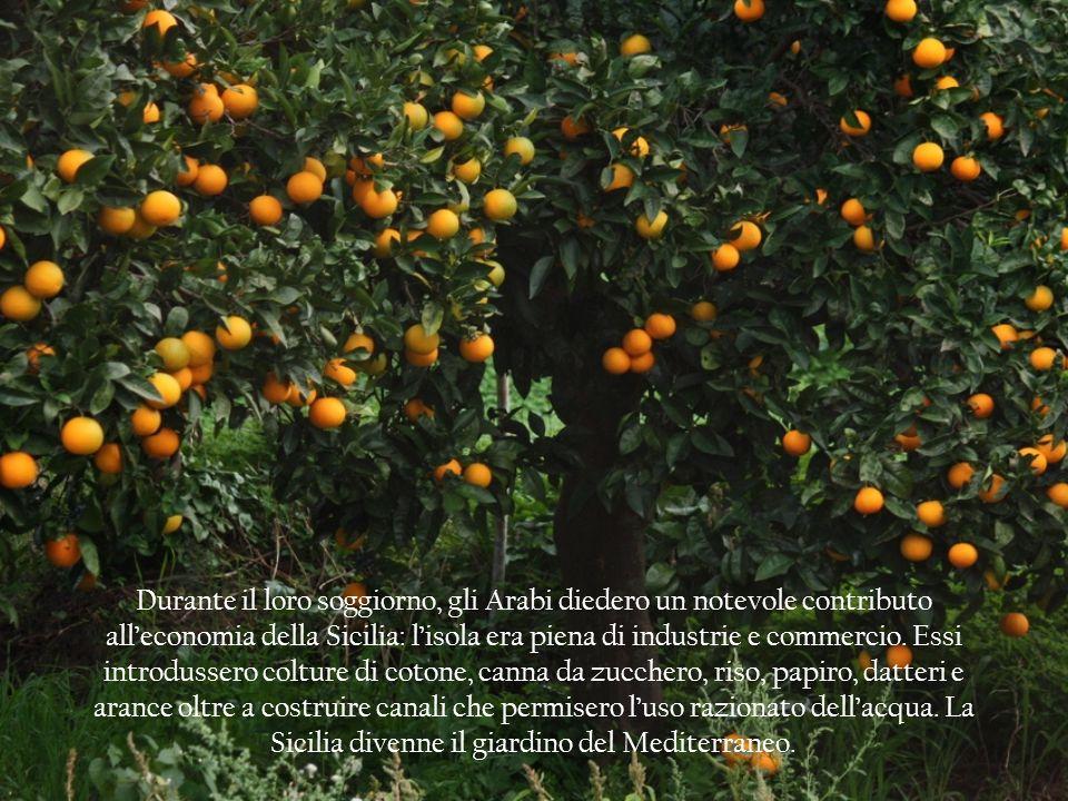 Durante il loro soggiorno, gli Arabi diedero un notevole contributo alleconomia della Sicilia: lisola era piena di industrie e commercio. Essi introdu