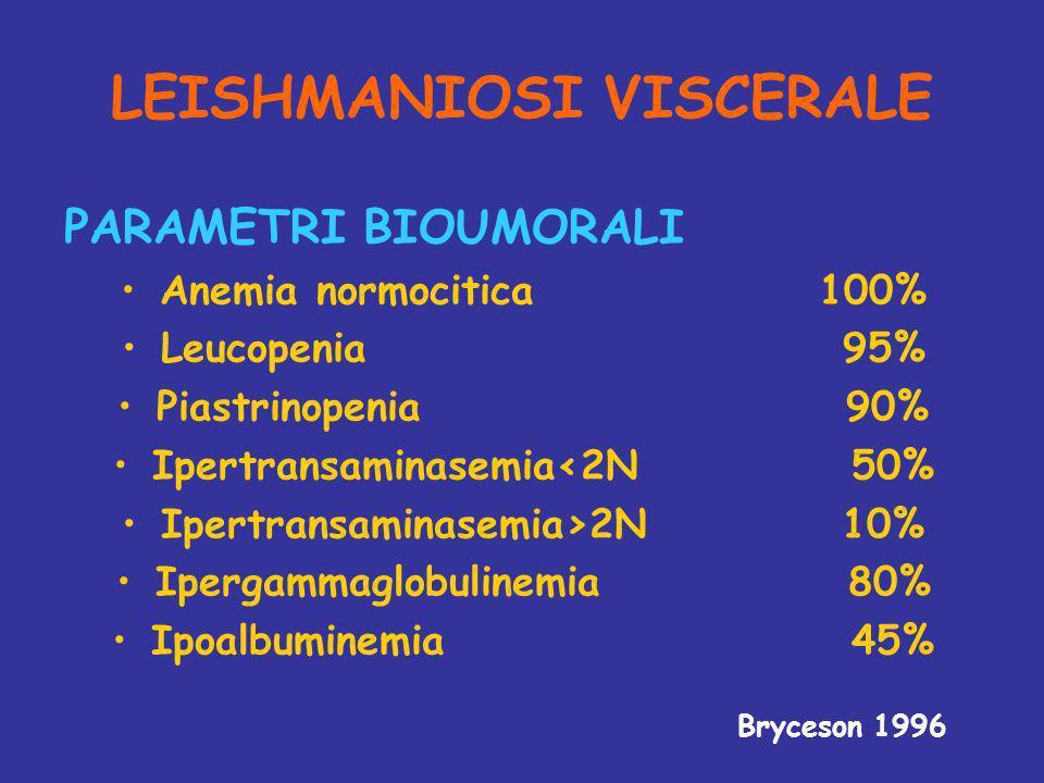 LEISHMANIOSI VISCERALE PARAMETRI BIOUMORALI Anemia normocitica 100% Leucopenia 95% Piastrinopenia 90% Ipertransaminasemia<2N 50% Ipertransaminasemia>2N 10% Ipergammaglobulinemia 80% Ipoalbuminemia 45% Bryceson 1996