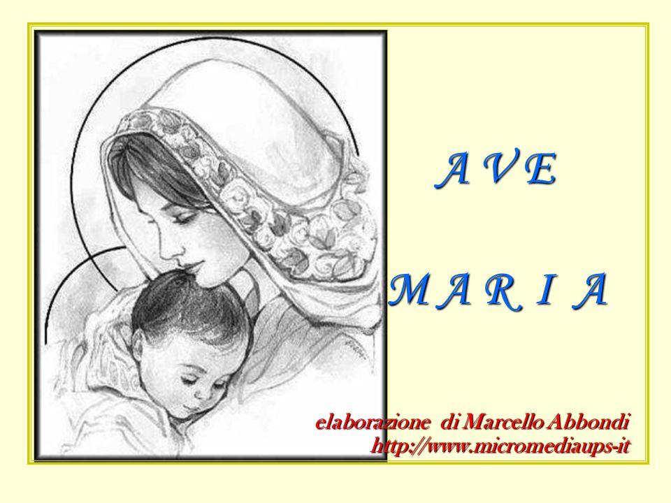 elaborazione di Marcello Abbondi http://www.micromediaups-it A V E M A R I A