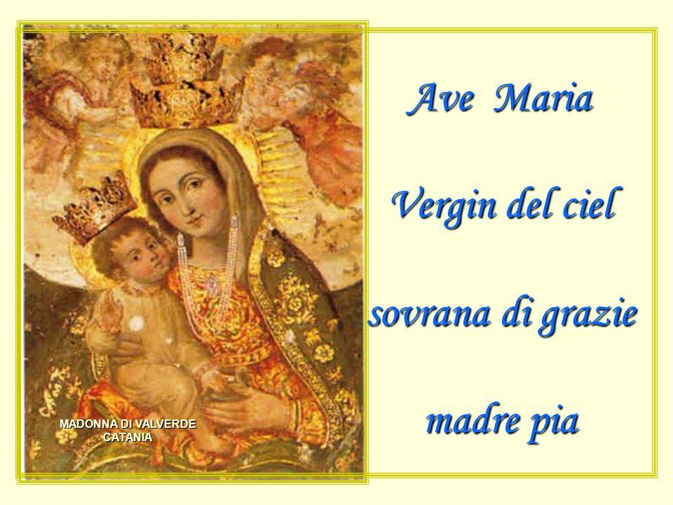 Ave Maria Vergin del ciel sovrana di grazie madre pia MADONNA DI VALVERDE CATANIA