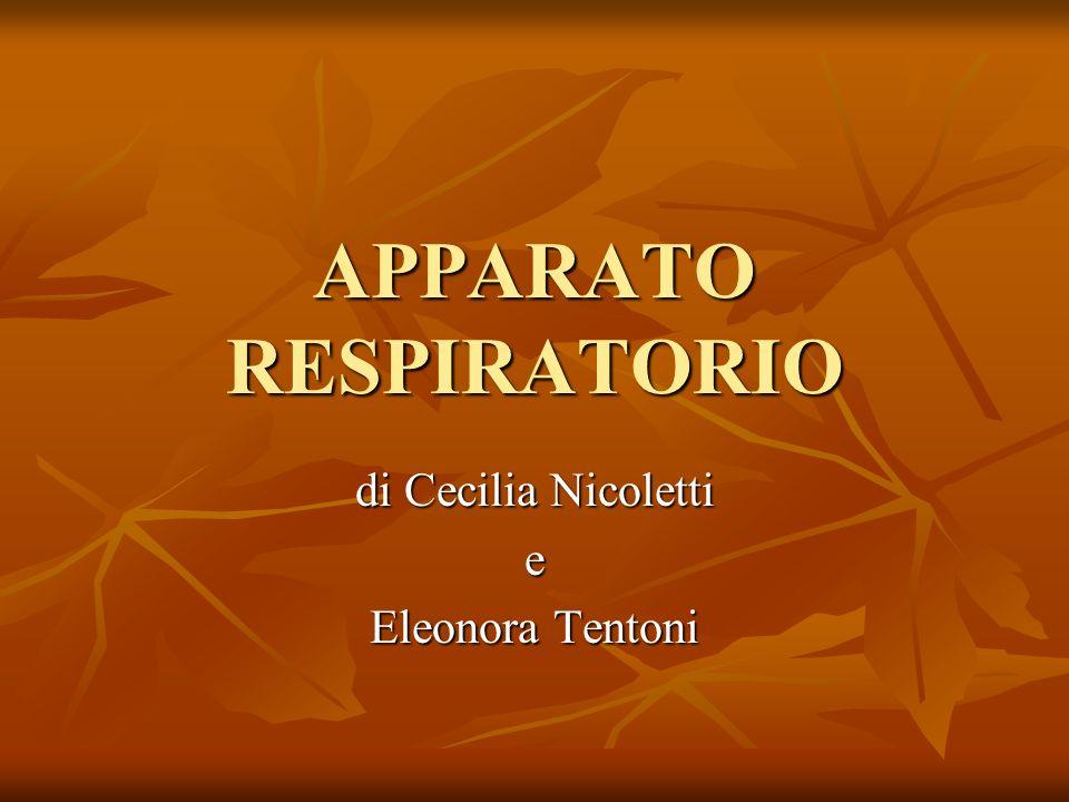 APPARATO RESPIRATORIO di Cecilia Nicoletti e Eleonora Tentoni