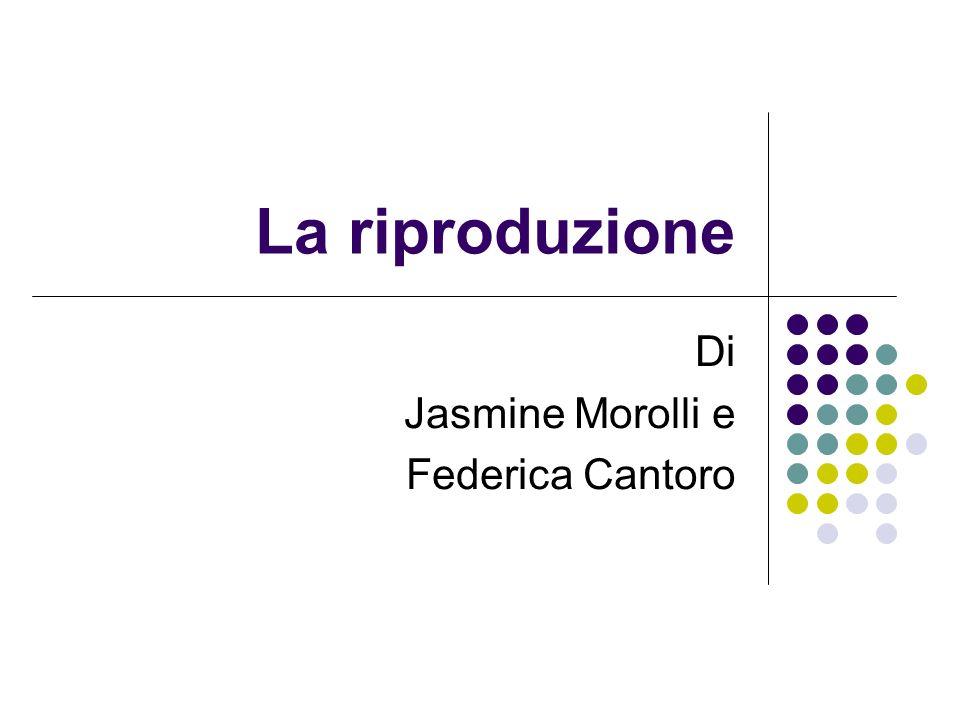 La riproduzione Di Jasmine Morolli e Federica Cantoro