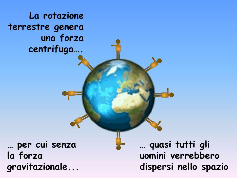 La rotazione terrestre genera una forza centrifuga…. … per cui senza la forza gravitazionale... … quasi tutti gli uomini verrebbero dispersi nello spa