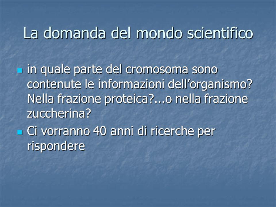 La domanda del mondo scientifico in quale parte del cromosoma sono contenute le informazioni dellorganismo? Nella frazione proteica?...o nella frazion