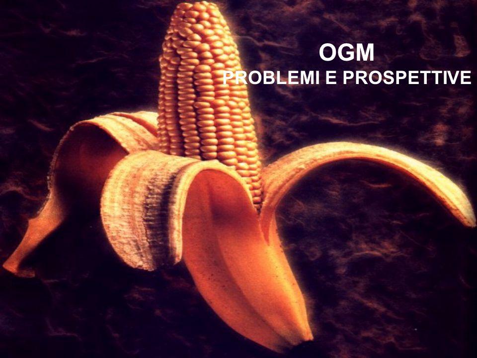 OGM PROBLEMI E PROSPETTIVE