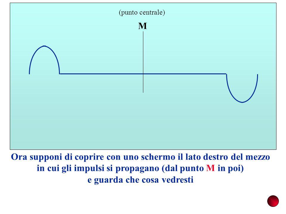 M (punto centrale) Ora supponi di coprire con uno schermo il lato destro del mezzo in cui gli impulsi si propagano (dal punto M in poi) e guarda che c