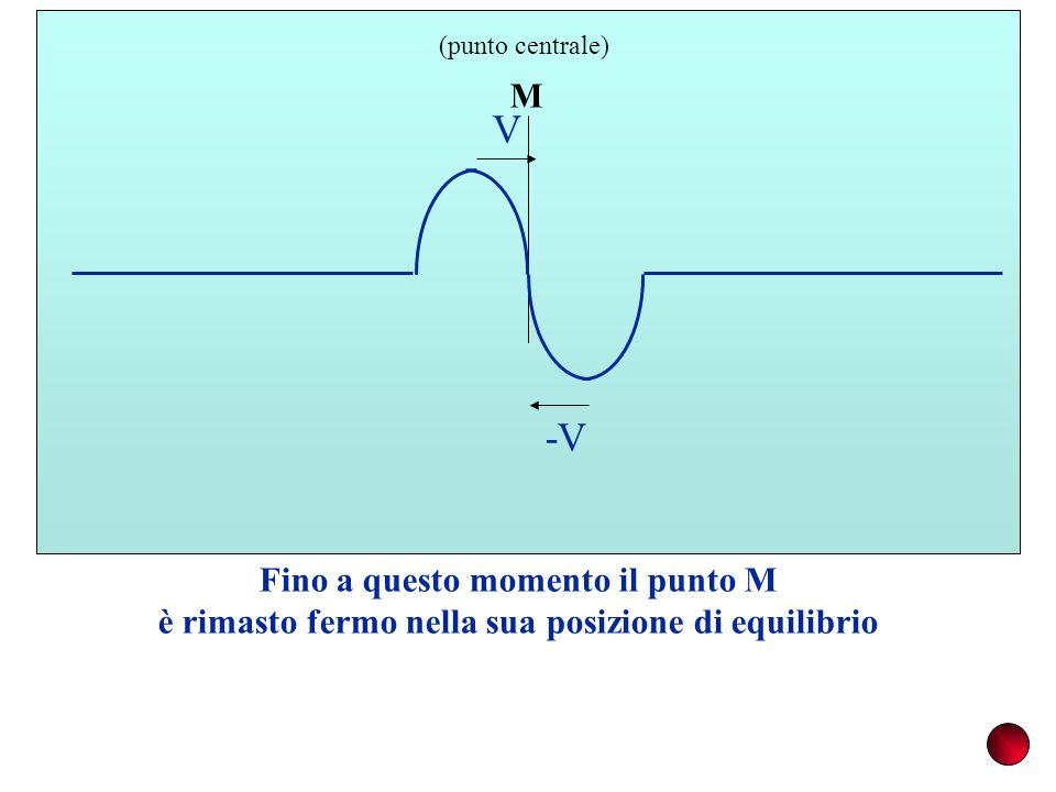 M (punto centrale) Fino a questo momento il punto M è rimasto fermo nella sua posizione di equilibrio V -V