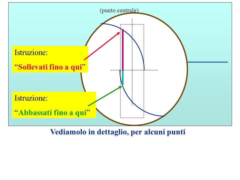 M (punto centrale) Vediamolo in dettaglio, per alcuni punti Istruzione: Sollevati fino a qui Istruzione: Abbassati fino a qui