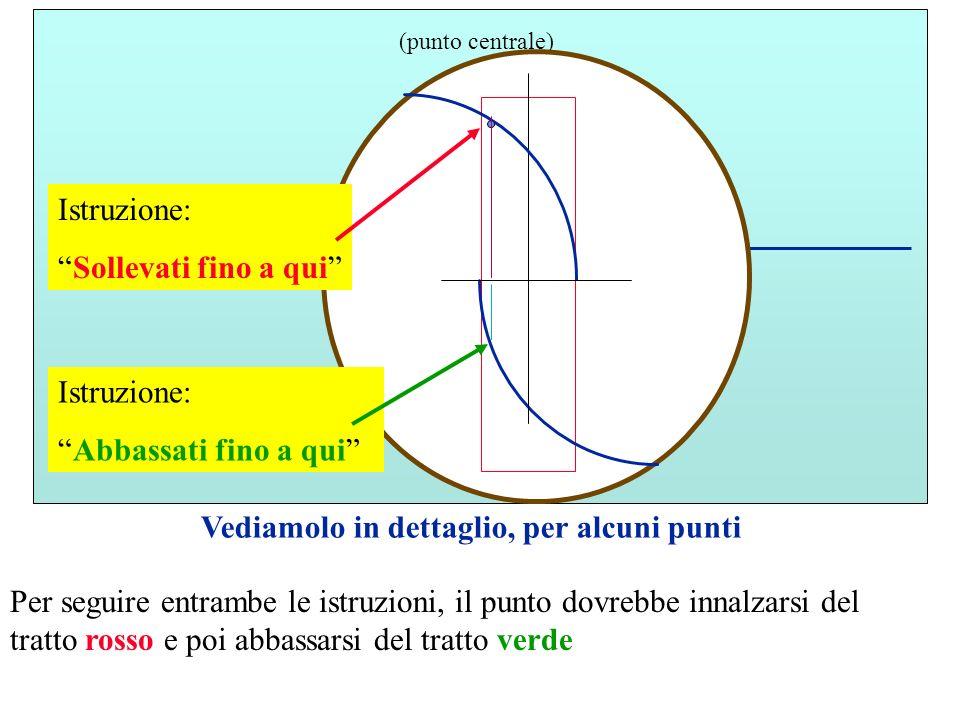 M (punto centrale) Vediamolo in dettaglio, per alcuni punti Istruzione: Sollevati fino a qui Istruzione: Abbassati fino a qui Per seguire entrambe le istruzioni, il punto dovrebbe innalzarsi del tratto rosso e poi abbassarsi del tratto verde