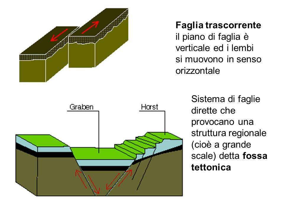 Faglia trascorrente il piano di faglia è verticale ed i lembi si muovono in senso orizzontale Sistema di faglie dirette che provocano una struttura re