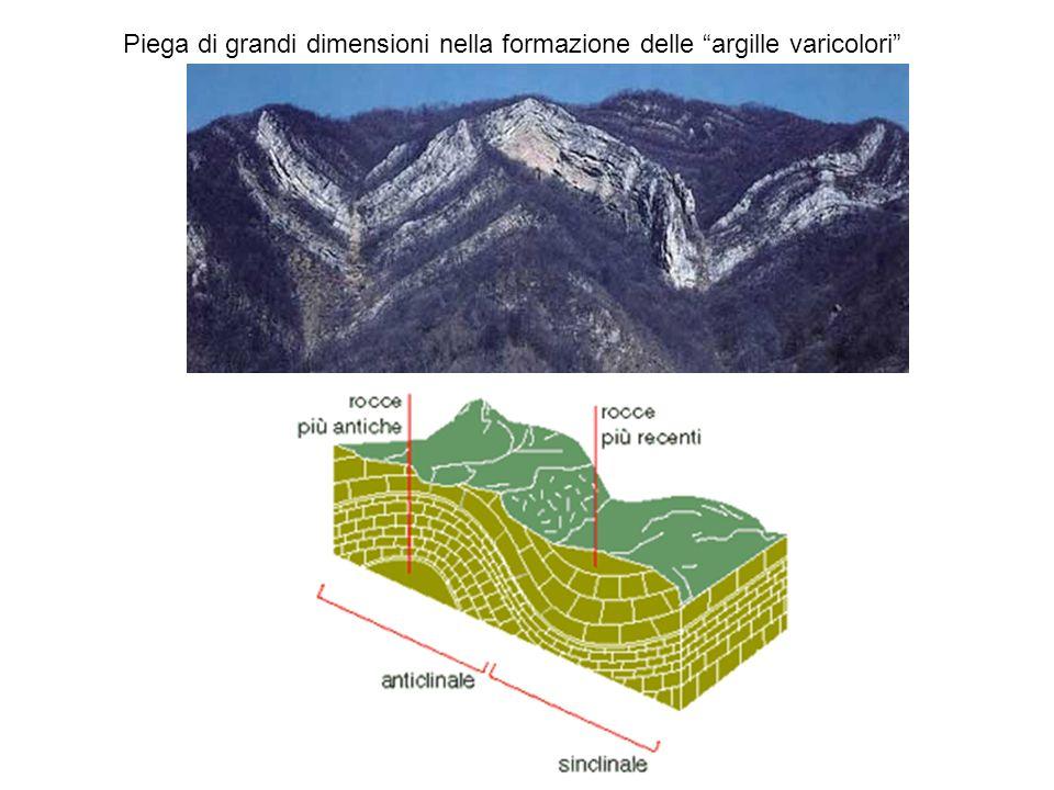 Piega di grandi dimensioni nella formazione delle argille varicolori