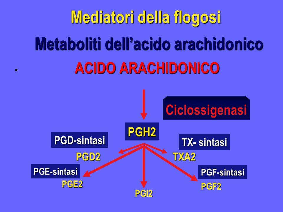 Mediatori della flogosi ACIDO ARACHIDONICO Ciclossigenasi PGH2 PGD2TXA2 TX- sintasi PGD-sintasi PGF2 PGE2 PGF-sintasi PGE-sintasi PGI2 Metaboliti dell
