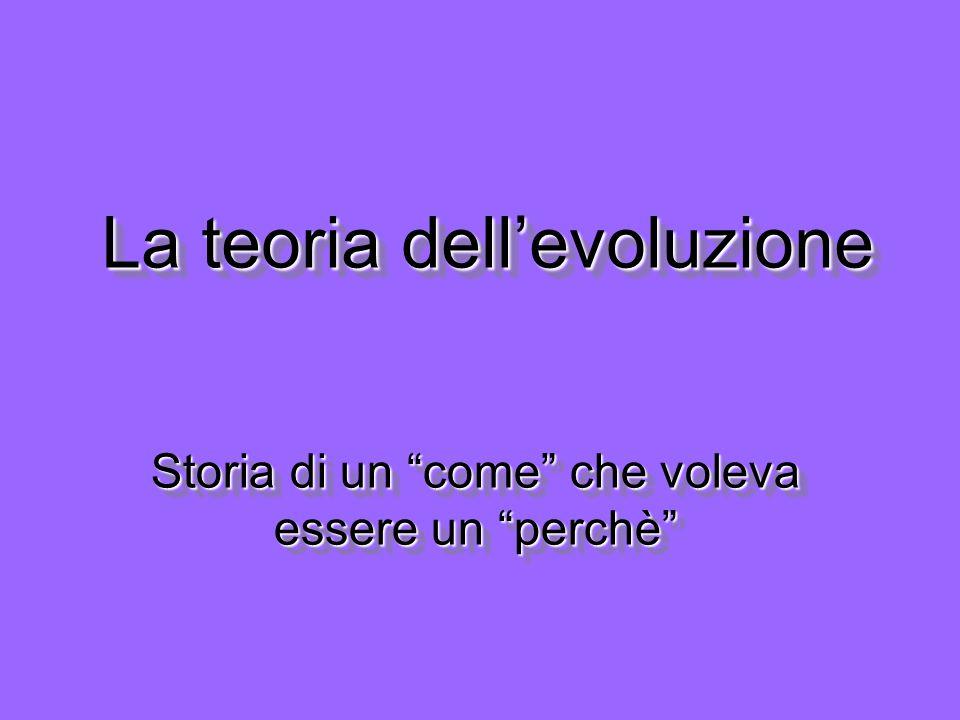 La teoria dellevoluzione Storia di un come che voleva essere un perchè