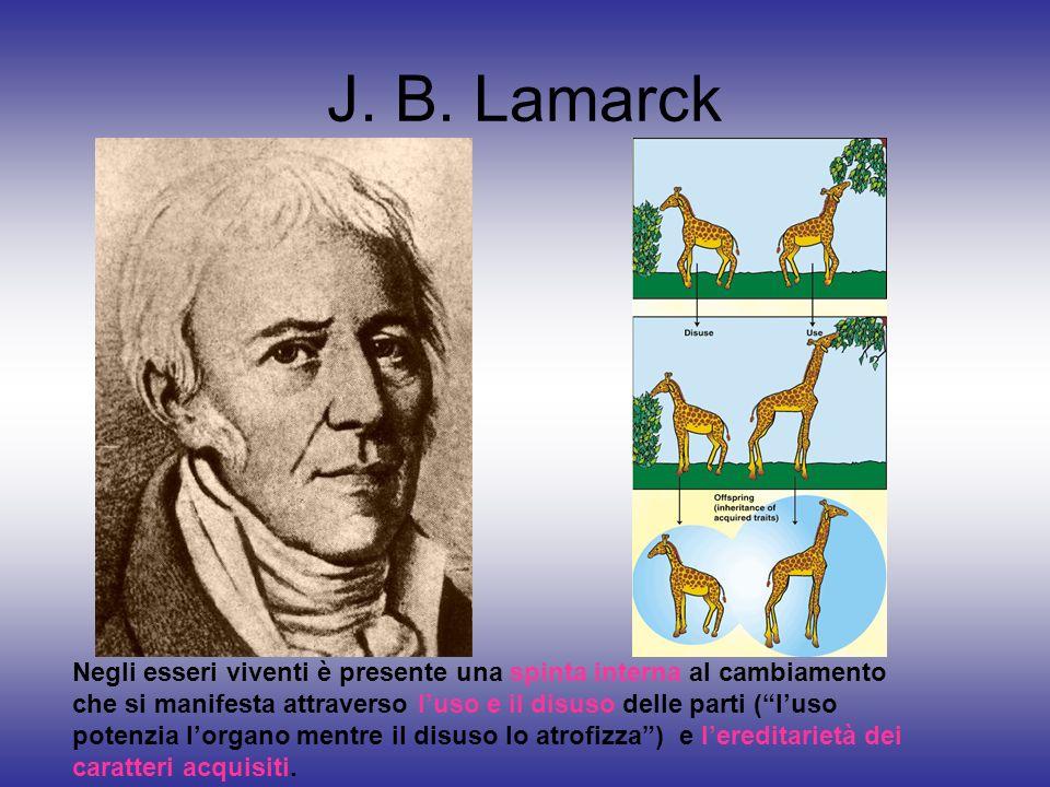 J. B. Lamarck Negli esseri viventi è presente una spinta interna al cambiamento che si manifesta attraverso luso e il disuso delle parti (luso potenzi
