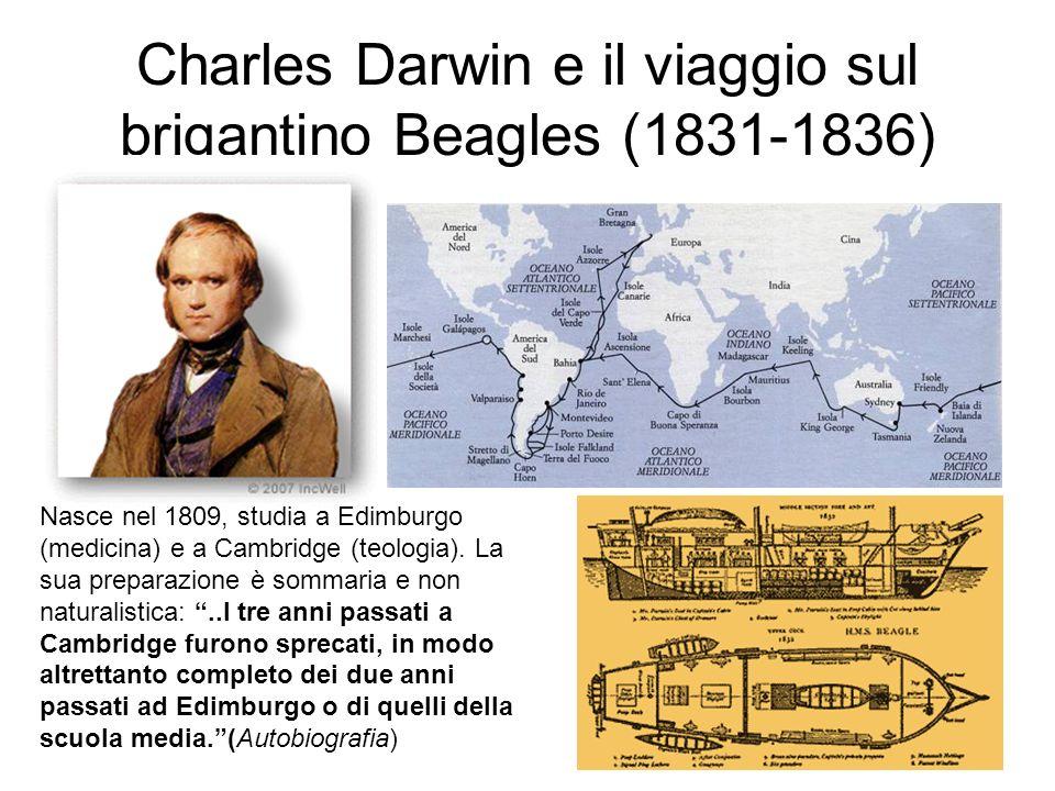 Charles Darwin e il viaggio sul brigantino Beagles (1831-1836) Nasce nel 1809, studia a Edimburgo (medicina) e a Cambridge (teologia). La sua preparaz