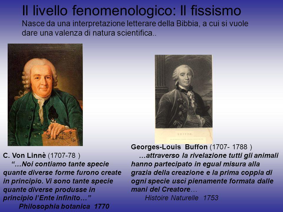 C. Von Linnè (1707-78 ) …Noi contiamo tante specie quante diverse forme furono create in principio. Vi sono tante specie quante diverse produsse in pr