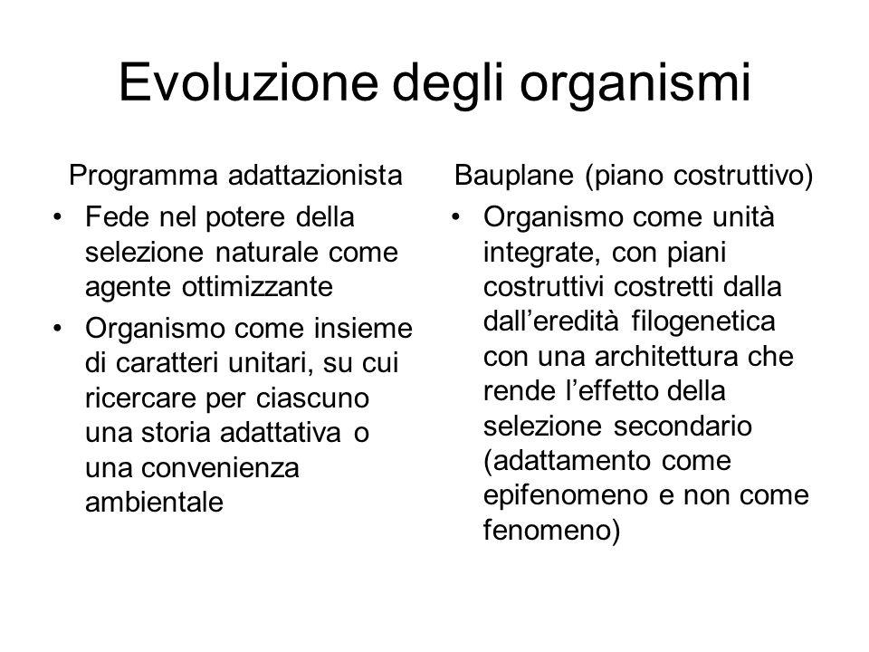 Evoluzione degli organismi Programma adattazionista Fede nel potere della selezione naturale come agente ottimizzante Organismo come insieme di caratt