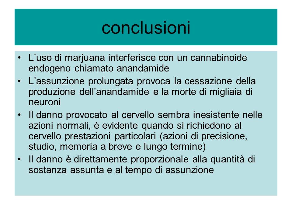 conclusioni Luso di marjuana interferisce con un cannabinoide endogeno chiamato anandamide Lassunzione prolungata provoca la cessazione della produzio
